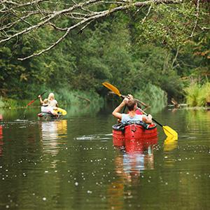 Activité nature sur les rivières de la Dordogne
