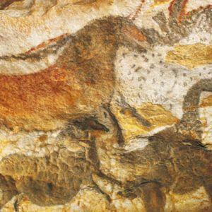 Photo des oeuvres de la grotte de LAscaux